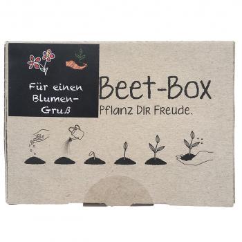 Beet-Box für einen Blumengruß Samen-Set